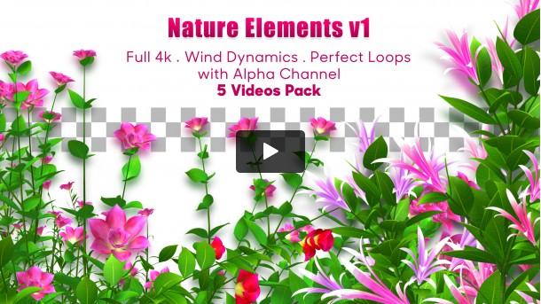 Nature Elements v1 - 4k Videos